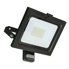 Sensor Strahler ZL 50W schwarz